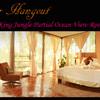 - Hotel FOR SALE Manuel Antonio