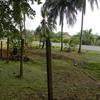 - Ocean view and Beachfront lot bordered by Costanera Highway