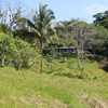 - Golfo Dulce Bahia Chal Farm For Sale