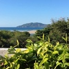 - Branded Ocean View hotel And Great ROI