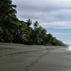 - Carate Rainforest Property: Development Opportunity