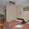 - Beautiful hotel in the heart of the jungle - Manuel Antonio