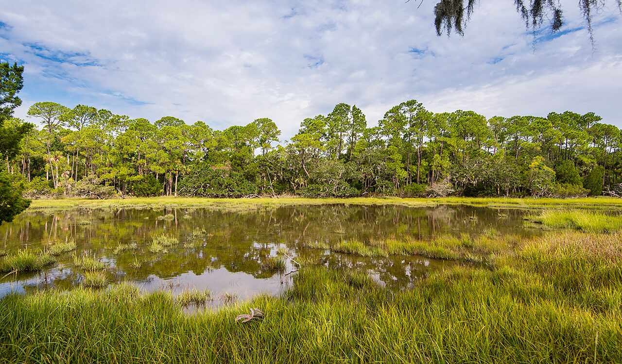70 Blue Heron Pond Rd