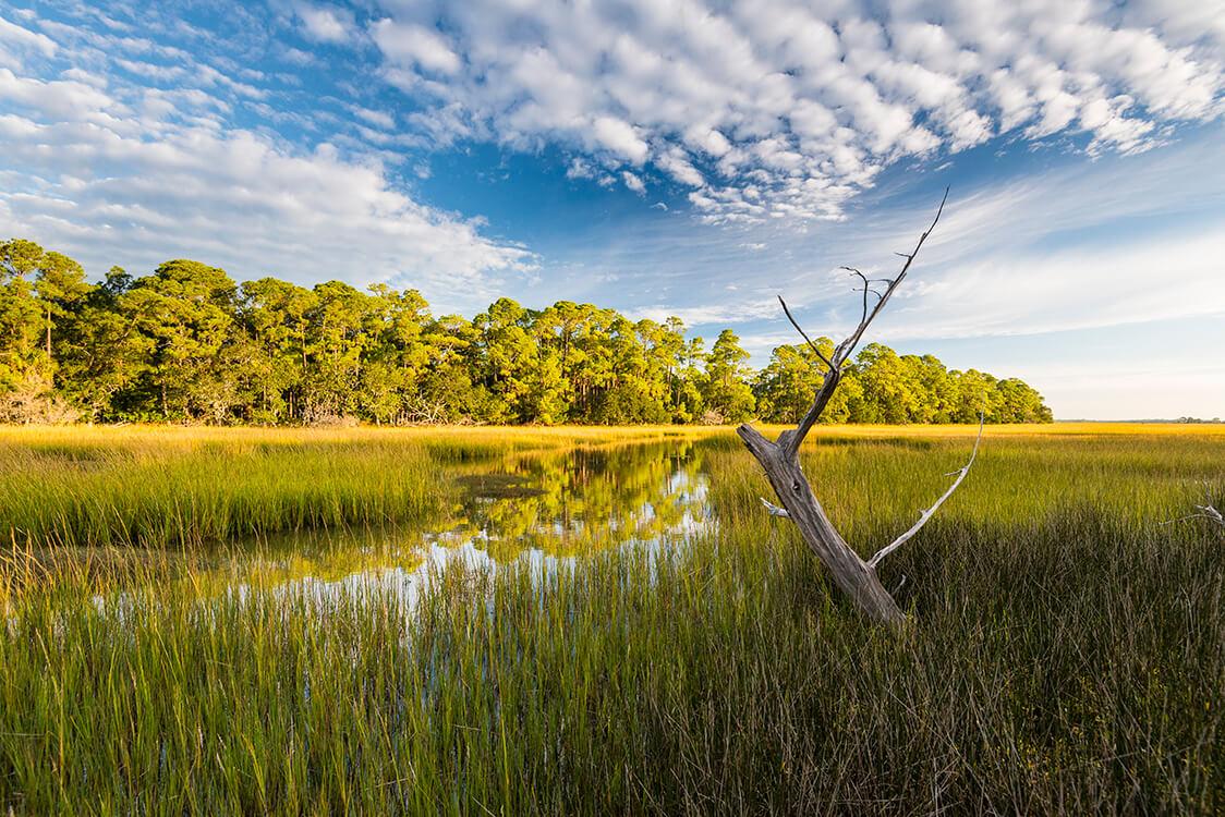 78 Blue Heron Pond Rd