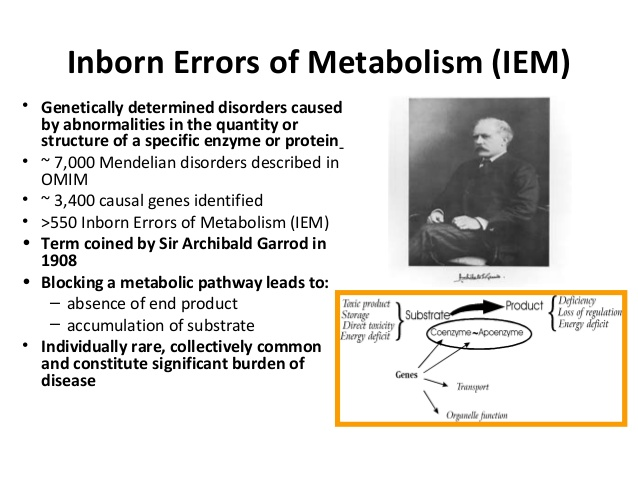 essay on inborn errors of metabolism In most inborn errors of urea cycle metabolism, the blood ammonia is in the moderate to markedly elevated range in inborn errors of metabolism.