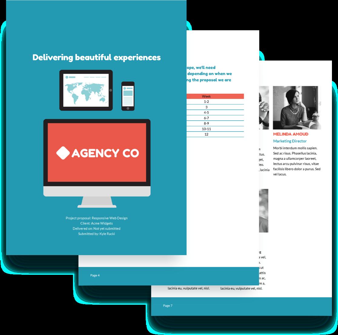 Web Design Proposal Template Free Sample