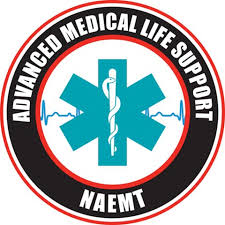 AMLS course logo