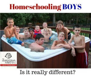 Homeschooling Boys: The Homeschool Sanity Show podcast