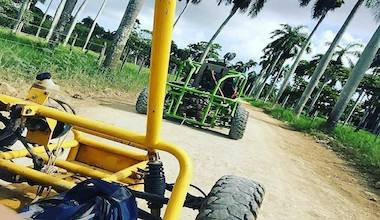 Things To Do In Punta Cana Excursions Amp Tours Punta