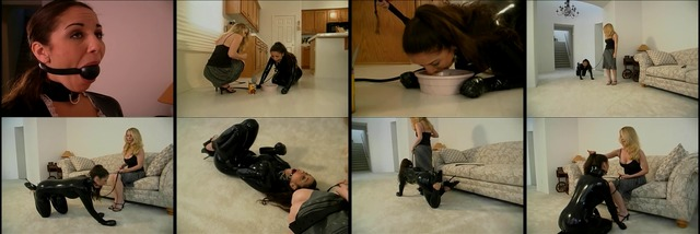Dominatrix has slave down on her knees eat dog food