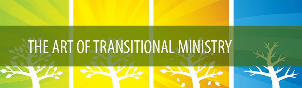 Wide-Image-Art-of-Transitional-Ministry