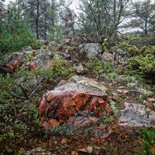Top 8 Hiking Trails in North America