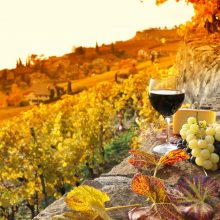 Off-the-Beaten-Path Wineries You Can Visit Today
