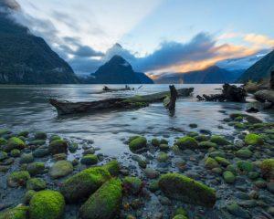 Mystical Fiordland