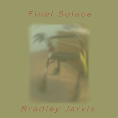 Final Solace Cover