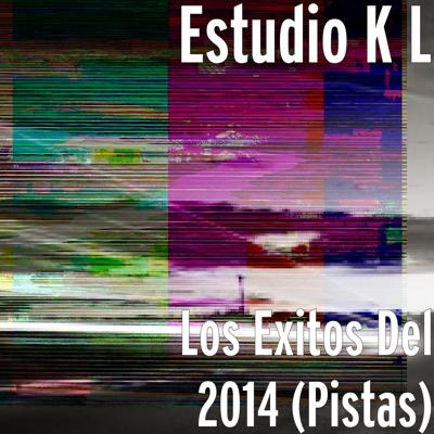 Los Exitos Del 2014 (Pistas) Cover