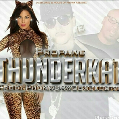 Thunderkat Cover
