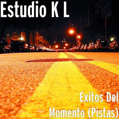 Exitos Del Momento (Pistas) Cover