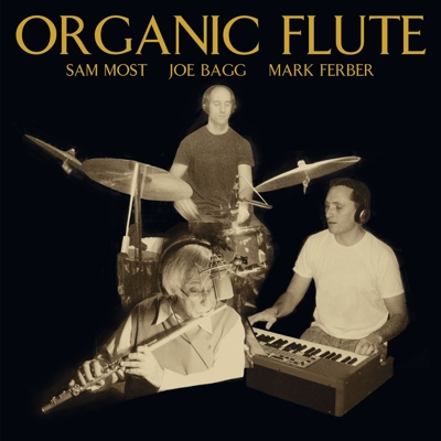 Organic Flute Cover