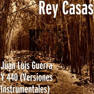 Juan Luis Guerra Y 440 (Versiones Instrumentales) Cover