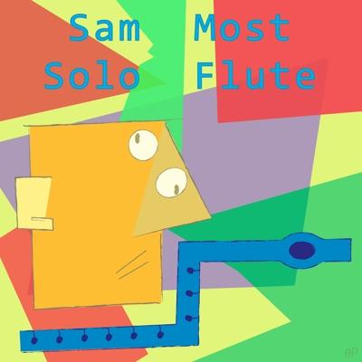Solo Flute Cover