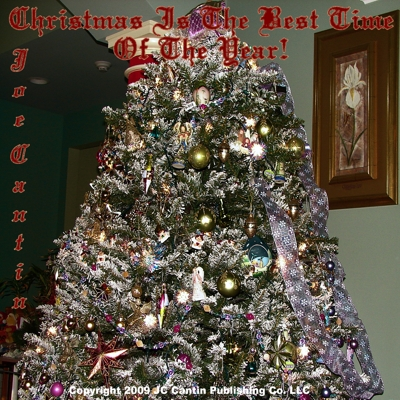 Christmas Is the Best Time of the Year! Cover