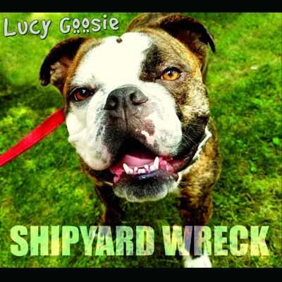 Lucy Goosie Cover