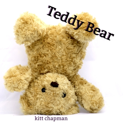 Teddy Bear Cover