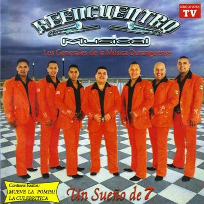 Éxitos De Reencuentro Musical Cover