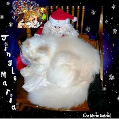 Jingle Maria Cover
