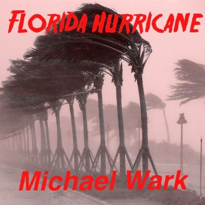 Florida Hurricane Cover