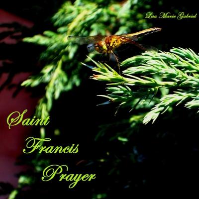 St Francis Prayer Cover