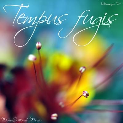 Tempus Fugit - Ultrasonique V1 Cover