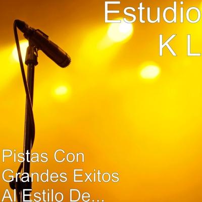 Pistas Con Grandes Exitos Al Estilo De... Cover