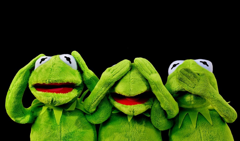 image of three stuffed animals kermit the frog