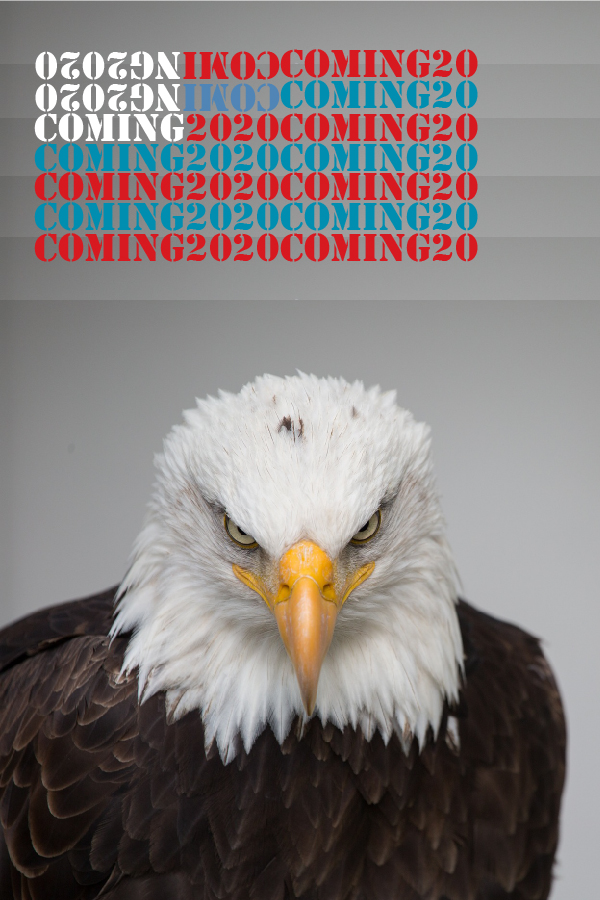 Photo of Eagle and words coming soon 2020