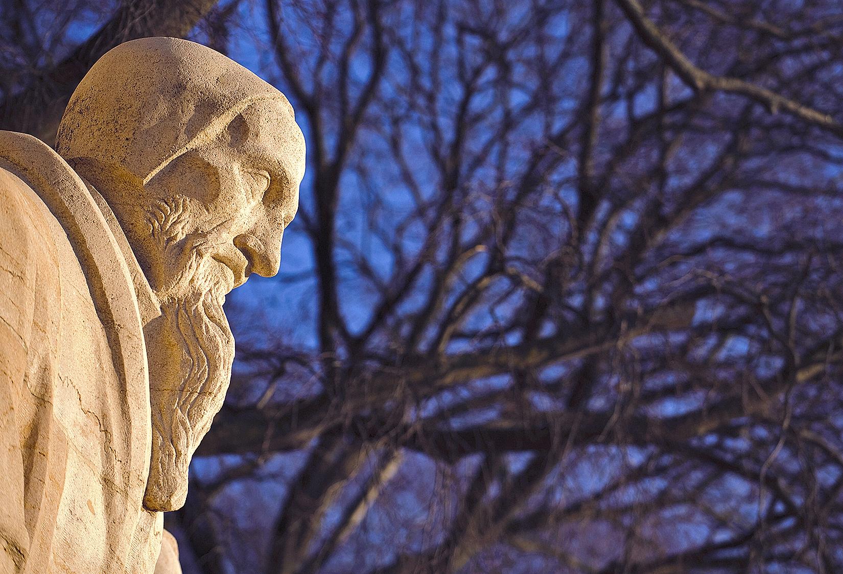 Believing the Bible: John Calvin