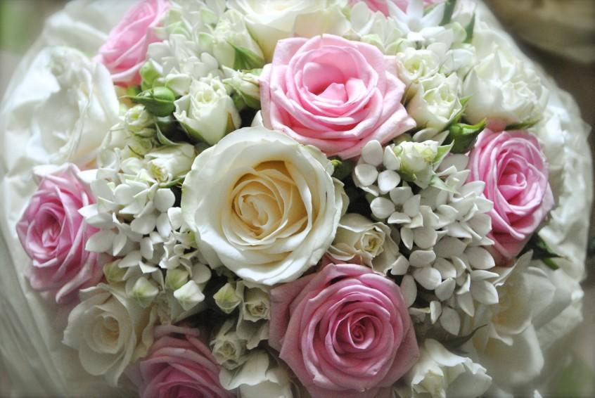 Pious Petunia Braves the Wedding Season