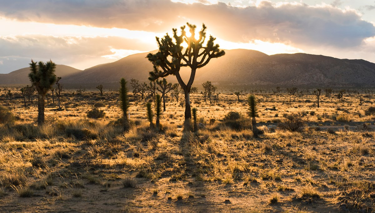 Water in the Wilderness: The Evolving Faith Conference