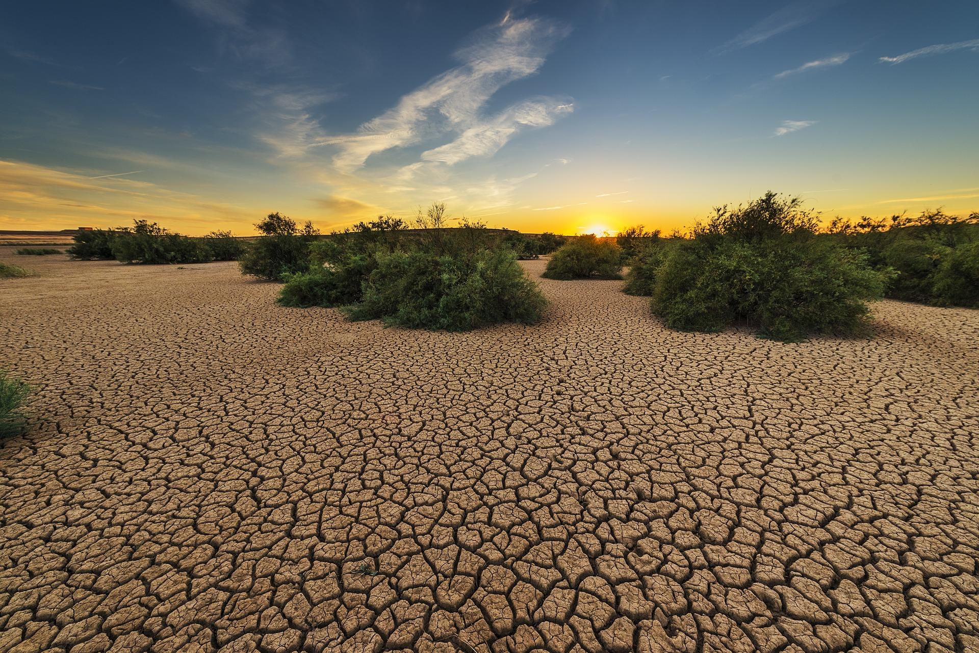 Drought – Psalm 126