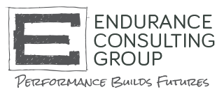 Endurance Consulting Group, Inc.