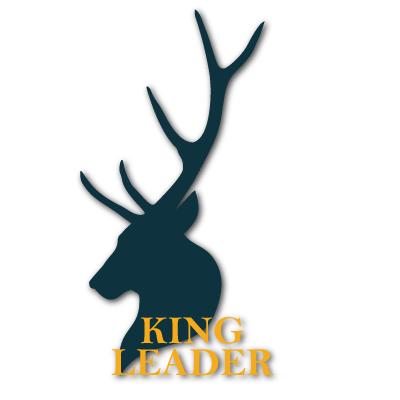 king leader Profile Image