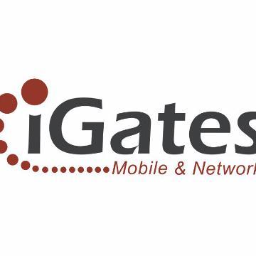 iGates - Information Gates LTD. Profile Image