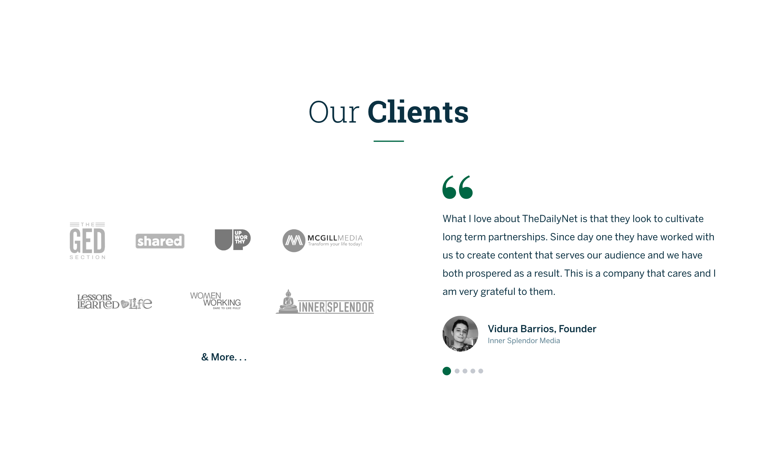 The Daily Net - Clients, Partners, Case Studies