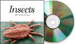 Insects, Mac/Win