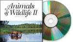 Animals & Wildlife II, Mac/Win