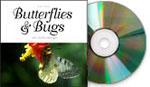 Butterflies & Bugs, Mac/Win