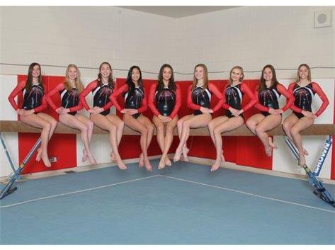 2018-'19 Gymnastics