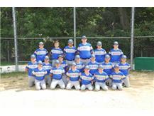 D50 Baseball 2019