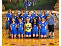 Girls J.V. Volleyball - 2017